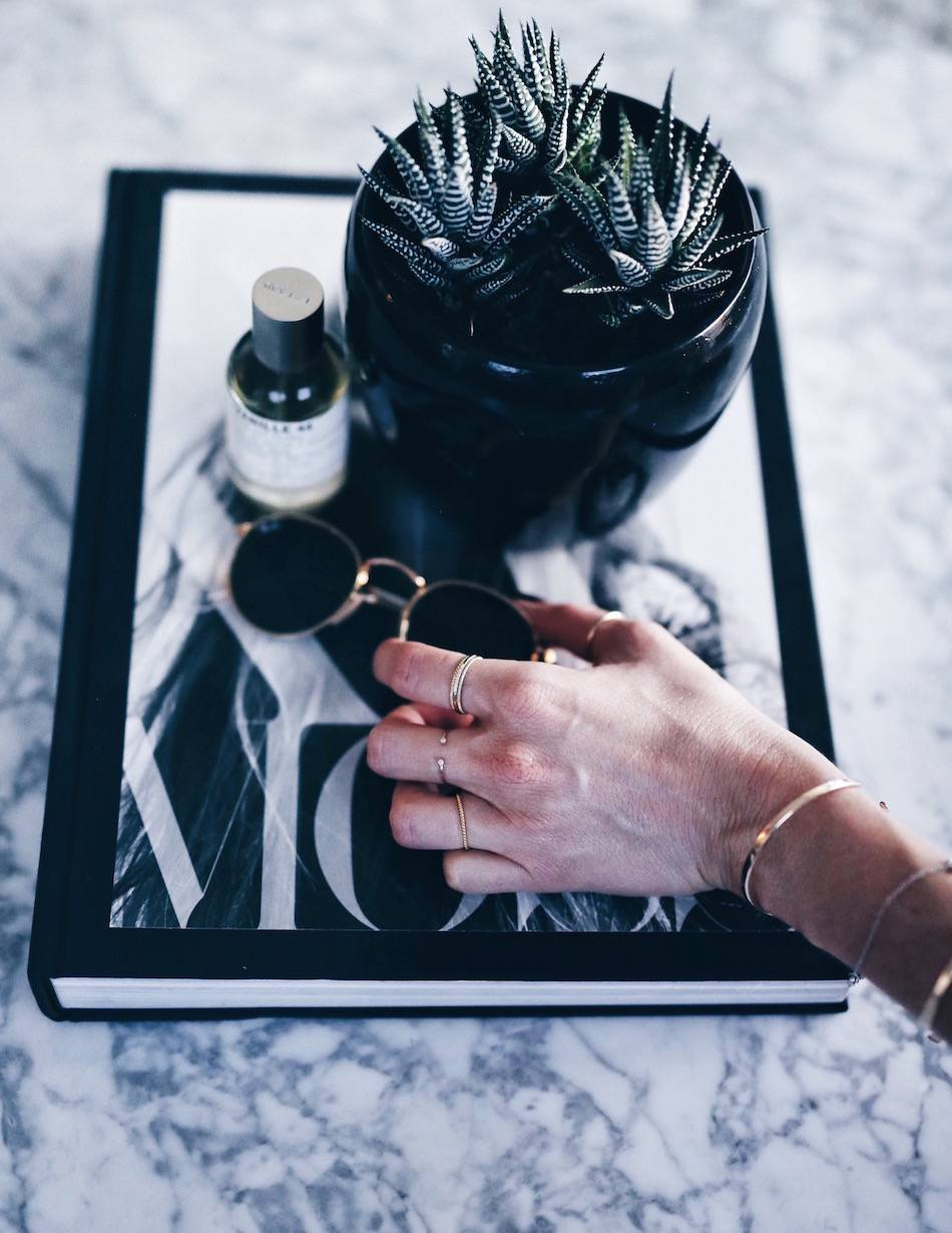 marble coffee table styling with succulent